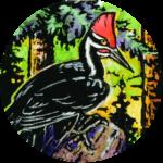 Bird Feeder Design Contest Winner!